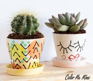 Mission Viejo Cute Planters